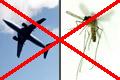 Libre du bruit, des moustiques et de courant d'air
